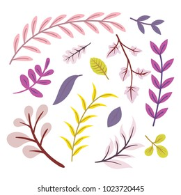 Set of hand drawing beautiful branches. For your design: branches and leaves. Botanical garden set.