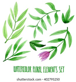 Set of hand drawn floral watercolor isolated elements