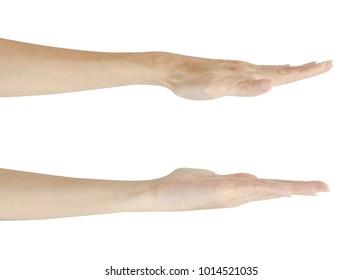 Set hand isolated on white background