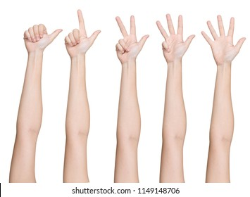 Set of hands gesturing numbers, on white background.
