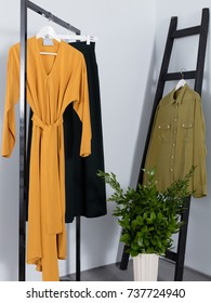 Set of hanging clothes in the interior, ladder, flowers, shirt, dress, skirt