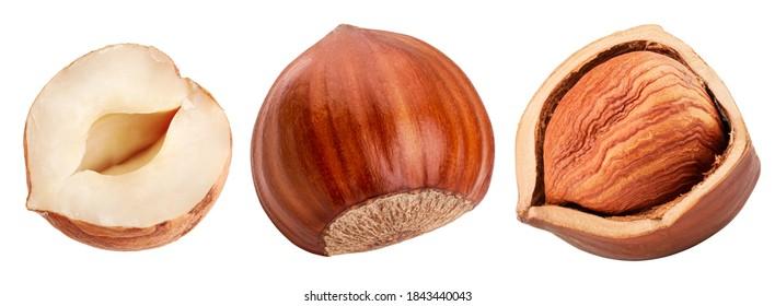 Set of hazelnuts isolated on white background