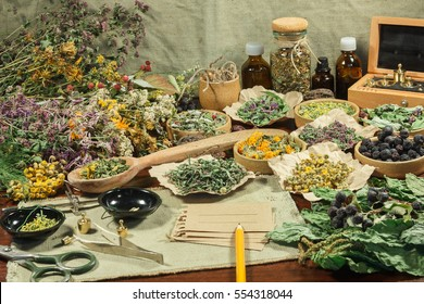 Set of healing herbs. Dried grass for use in alternative medicine, spa, herbal cosmetics, herbal medicine, preparing infusions, decoctions, tinctures, powders, ointments, butter, tea, bath.