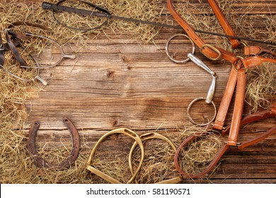 Set of horse equipment on wooden background with empty space for text