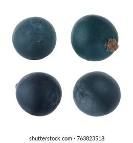 set of juniper berries isolated