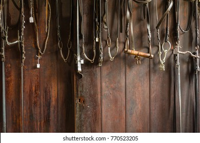 Set of leather horse bridles and bits hanging on a wooden wall of stable.