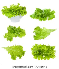 set with lettuce salad on white background