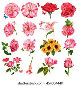 Set of many different watercolor flowers, hand painted on white background in style of vintage botanical art: roses, eustoma, chrysanthemum, lily, malva, peony, sunflowers, and calla; with butterflies