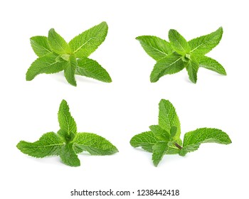Set with mint sprigs on white background