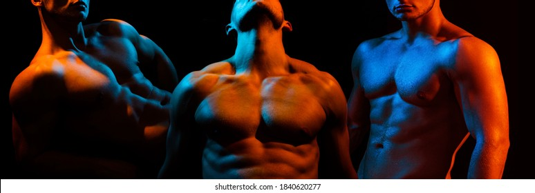 Set of muscular men body and shoulder muscles. Sexy gays with muscle