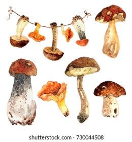 Set with mushroom garland and 5 mushrooms.