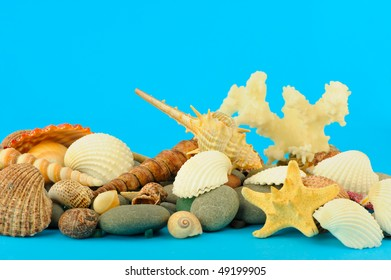 Set of objects of the sea underwater world. On isolated blue background