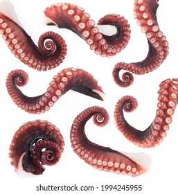 Set of octopus tentacles isolated on white background.