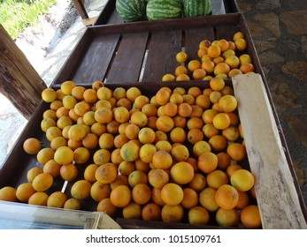Set of oranges on a table
