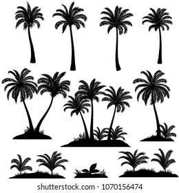 Set Palm Trees, Exotic Landscapes, Tropical Plants and Grass Black Silhouettes Isolated on White Background.