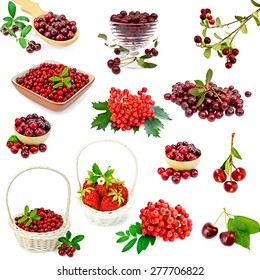 A set of photos of strawberries, cranberries, cranberry, cherry, mountain ash, viburnum isolated on a white background