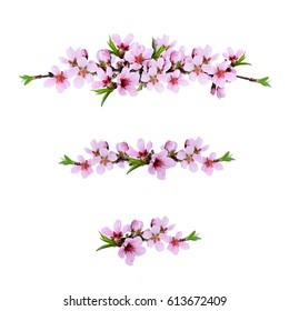 Set of pink peach twigs line arrangements  isolated on white background. Flat lay. Top view.