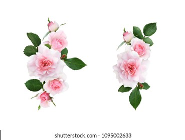 Set of pink rose flowers and leaves arrangements isolated on white. Flat lay. Top view.