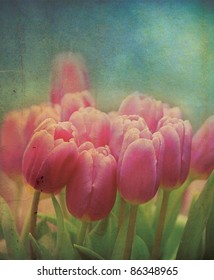 A set of pink tulip flowers set on a grunge style applied effect, set on a portrait format.