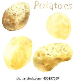 Set potatoes. Watercolor food. Vegetable.