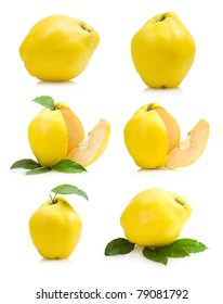 set of quince images
