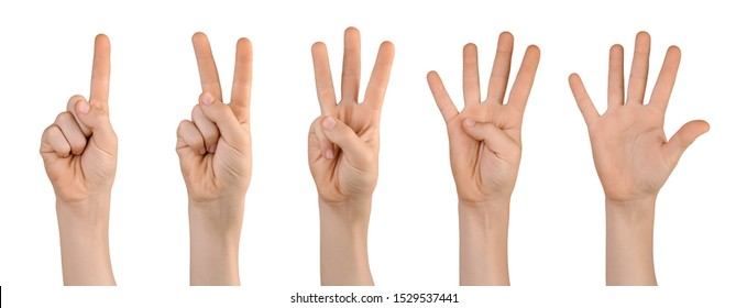 Set of raised up childs hands showing with fingers number one, two, three, four, five. Isolated on white background.