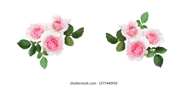 Set of rose flowers arrangements isolated on white