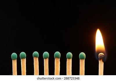Set of seven green and one burning wooden matches isolated on black background