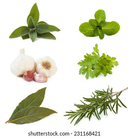 set of six herbs, isolated on white background