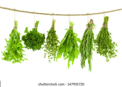 Set of Spice Herbs  /  isolated on white background /  bunches of thyme, basil, oregano, parsley, sage and rosemary are hanging and drying