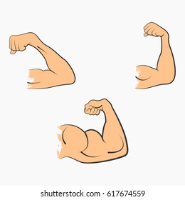 Set strong power muscle arms the stages of pumping biceps icon in color