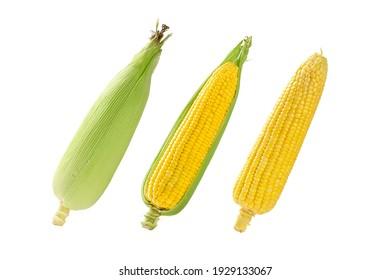 Set of Sweet corn isolated on white background.