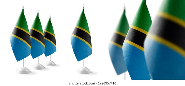 Set of Tanzania national flags on a white background