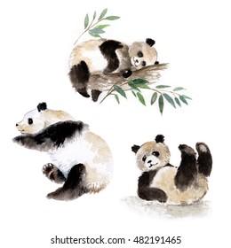 Set of three lying panda bears, watercolor