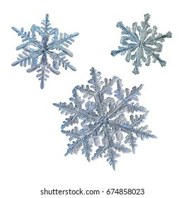 Set with three snowflakes isolated on white background. Macro photo of real snow crystals: large stellar dendrite with elegant shape, fine hexagonal symmetry and thin, ornate arms with side branches.