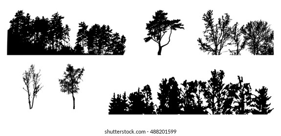 Set of Tree Silhouette Isolated on White Backgorund. Vecrtor Illustration.