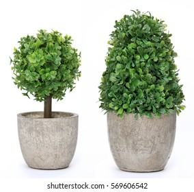 Set trees that decorate the room. Pot fake plant isolated on white - Shutterstock ID 569606542