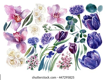 Set of tulips, roses and orchids. Watercolor painting