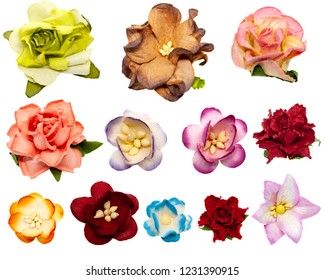 Set of twelve colored paper flowers for scrapbooking, isolated on white background