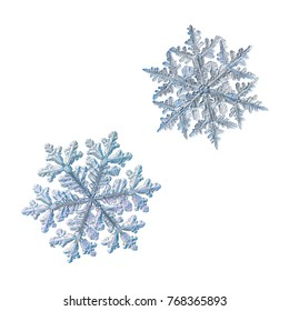 Set with two snowflakes isolated on white background. Macro photo of real snow crystals with complex, elegant shapes, relief structure, fine hexagonal symmetry and long, ornate arms with side branches