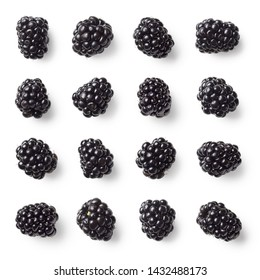 Set of various blackberries isolated on white background. Top view