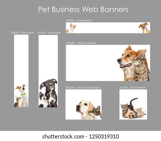 Set of various size web banners with cats and dogs for pet business advertising