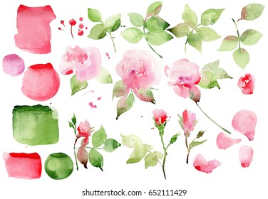 Set vintage watercolor elements of pink rose. Illustration isolated on white background. Watercolor English roses and leaf