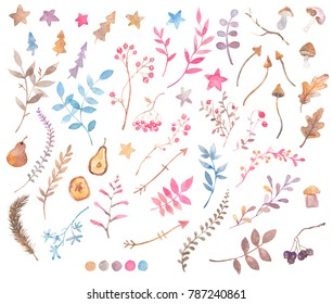 Set of watercolor florals, dry herbs, fruits, berries and mushrooms. Hand drawn design elements. Warm natural tints. Isolated on white clip art collection