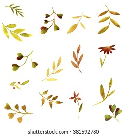 set of watercolor green branches and leaves, hand drawn vector design elements