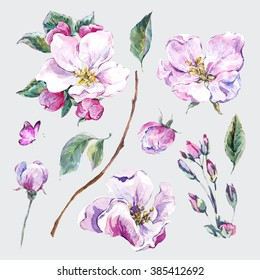 Set of watercolor Spring Nature elements, sprigs separately leaves flower, pink blooming branches cherry, peach, pear, sakura, apple trees and butterflies, isolated botanical watercolor illustration