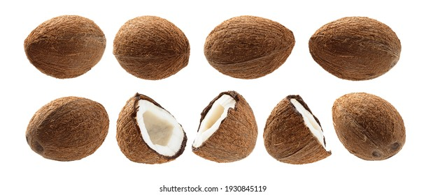 A set of Whole and half cocoanuts. Isolated on a white background