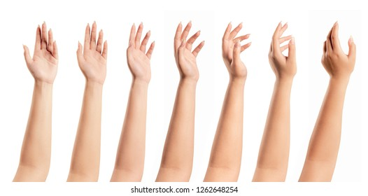 Set of woman hand isolated on white background.