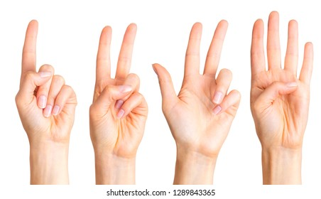 Set of woman hands count on fingers, swear sign or multitouch gesture. Isolated with clipping path.