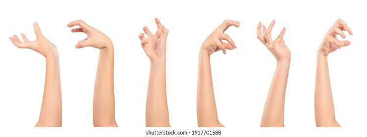 Set of Woman hands different gesturing  isolated on white background.